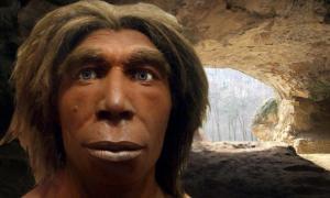 Deriv; Reconstrucción de un neandertal, Museum für Naturkunde, Berlín, Alemania (CC BY-SA 3.0),Cueva Vindija cerca de Varazdin en Croacia (CC BY-SA 2.0)