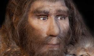 Representación de un neandertal. Un nuevo estudio de ADN neandertal cuenta la historia de sus migraciones entre Europa y Siberia. Fuente: : procy_ab / Adobe Stock