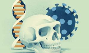 Una nueva investigación ha descubierto que un grupo de genes, denominados genes Covid de neandertal, reducen el riesgo de desarrollar Covid-19 grave en alrededor de un 20% y se han heredado de los neandertales.