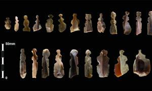Bladelets y escamas con dos pares de muescas interpretadas como figuras neolíticas. Fuente: equipo arqueológico de Kharaysin / Antiquity Publications Ltd
