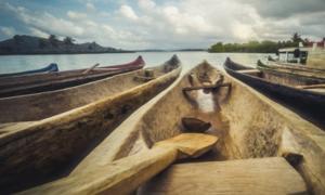 Canoas de madera. Crédito: hanohiki / Adobe Stock