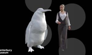 Una ilustración muestra la altura aproximada de un pingüino gigante junto a una mujer. Fuente: Museo de Canterbury