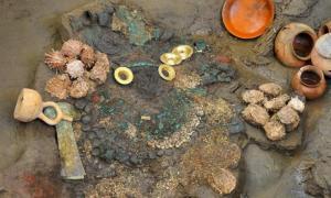 Pendientes de oro, dos cuchillos, colección de conchas, y recipientes de cerámica descubiertos en una tumba Lambayeque inundada.