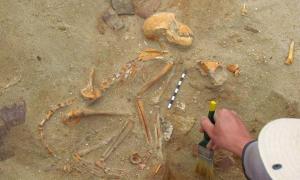 El esqueleto completo de uno de los monos mascotas indios hallados por investigadores polacos en un cementerio de mascotas en el antiguo puerto de Berenice, Egipto.