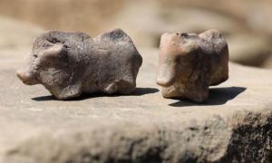 : Antiguas estatuillas de cerdo encontradas en Polant Crédito: PAP / Grzegorz Momot