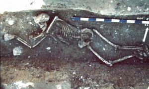 Lunel-Viel (Languedoc-sur de Francia). Víctima de la plaga arrojada a una trinchera de demolición de una casa galorromana; Finales del siglo VI-principios del siglo VII. Fuente: 1990; CNRS - Claude Raynaud