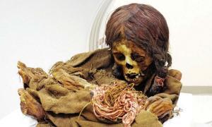 La momia Ñusta. Crédito: Universidad Estatal de Michigan