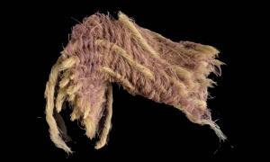 Fragmento de tejido de lana decorado con hilos teñidos con purpura real, 1000 a.C., Timna Valley, Israel. Fuente: Dafna Gazit, cortesía de la Autoridad de Antigüedades de Israel