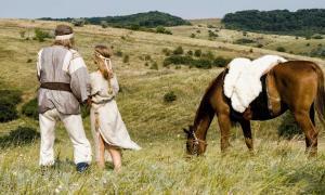 Un nuevo estudio analiza la dieta antigua de los escitas utilizando sus restos humanos, para concluir que, de hecho, la mayoría de los escitas llevaban un estilo de vida agrícola sedentario.