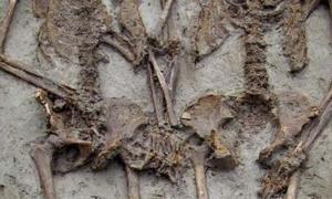 los esqueletos enterrados en Italia llevan alrededor de 1500 años tomados de la mano. Fuente: ArcheoModena