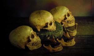 los incas sacrificaron niñas y exhibieron sus cráneos. Fuente: dk_patt/ Adobe Stock.