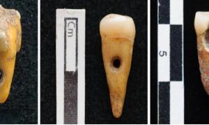 Imagen de Portada: Se ha encontrado evidencia de joyas de dientes humanos en Çatalhöyük, Turquía. Fuente: SCOTT HADDOW / UNIVERSITY OF COPENHAGEN