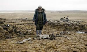 los científicos extrajeron los restos del esqueleto de mamut del permafrost de descongelación y descubrieron un sitio de fabricación de armas cercano. Fuente: Innokenty Pavlov