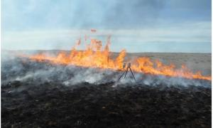 El Missoula Fire Sciences Laboratory colocó sensores para determinar la temperatura máxima del fuego sobre la hierba. Los datos de la quema serán estudiados para su empleo en otros yacimientos arqueológicos.