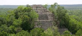 Estructura I, una de las dos pirámides de Calakmul. Fuente: PhilippN/CC BY SA 3.0