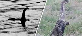 Portada - A la izquierda, fotografía del supuesto 'monstruo del Lago Ness', conocido cariñosamente como Nessie. A la derecha, fotografía de una extraña criatura tomada recientemente en un campo de Escocia. (Fotomontaje: La Gran Época).