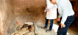 Portada - Restos de un sarcófago con varios gatos momificados. Crédito: Ministerio de antigüedades.