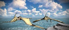 Oculto a plena vista: El pterodáctilo de Nueva Guinea