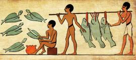 los egipcios preparan pescado, ¡quizás un delicioso guiso de tilapia!