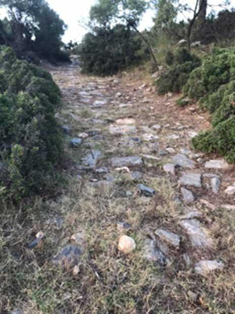 La antigua carretera en la colina de las laderas en Stratonikeia. (Bilal Sogut/ Facebook)