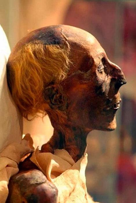 Una imagen en color de la momia de Ramsés II de perfil. (Wolfman12405 / CC BY SA 4.0)