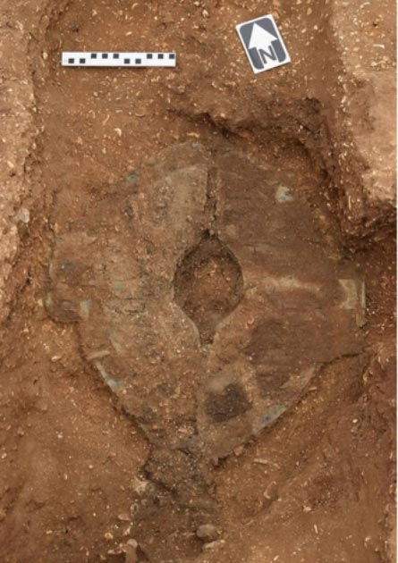 El escudo guerrero desenterrado antes de que se completara el trabajo de conservación (MAP Archaeological Practice Limited)