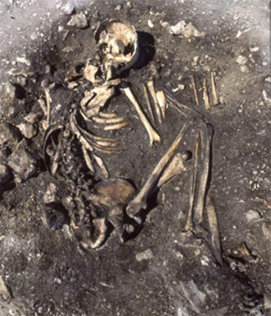 Una mujer de la Cultura Pitted Ware en el campo de la tumba de Ajvide en Gotland representa un entierro influenciado por la Cultura Battle Axe Fuente: Foto de Göran Burenhult, (Universidad de Uppsala)